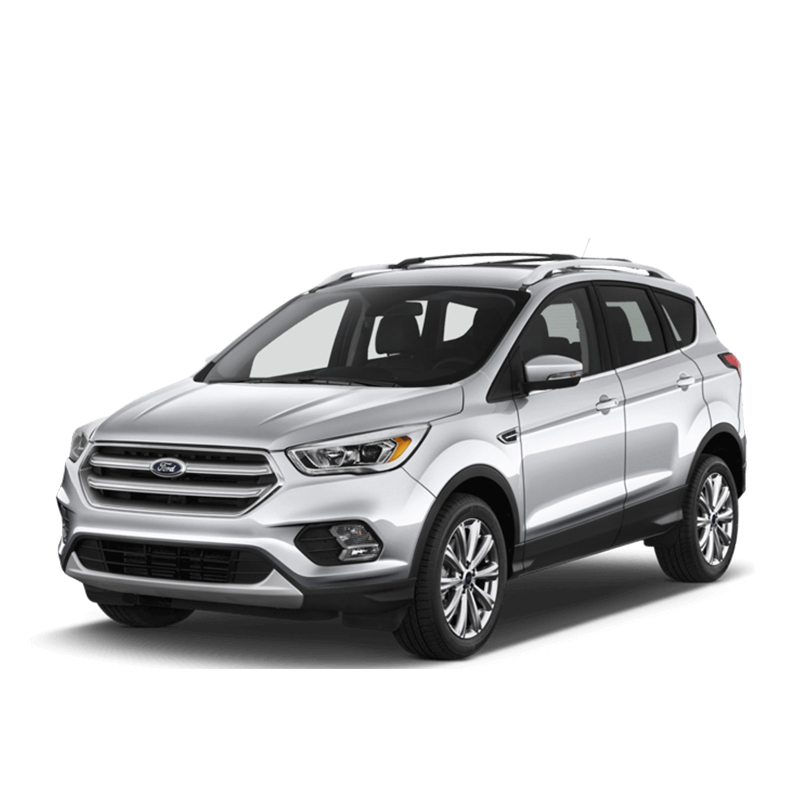 Ford Kuga Can Filter