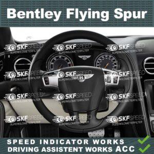 Mileage Blocker BENTLEY FLYING SPUR (1st GEN.)