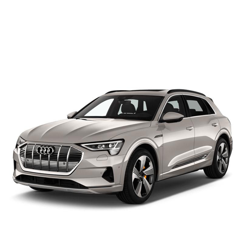 Audi e-tron mileage freezer