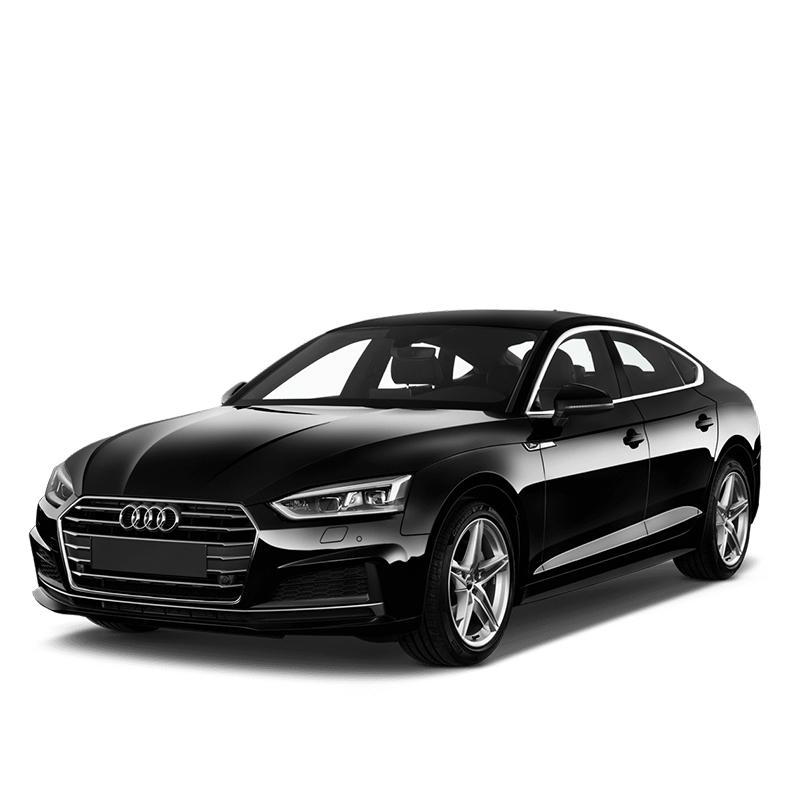Audi-g-tron Mileage-adjustment-tool